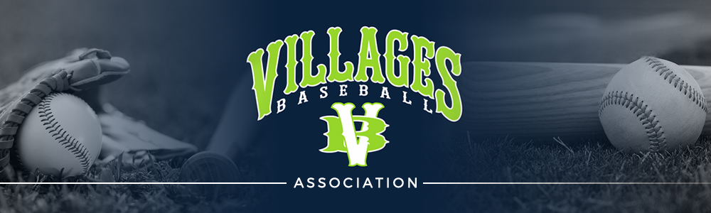 Villagesbaseball banner