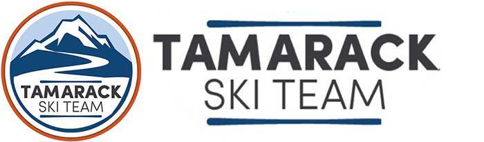 Skiteamlogo