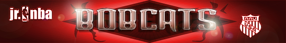 Bobcat_website_banner4