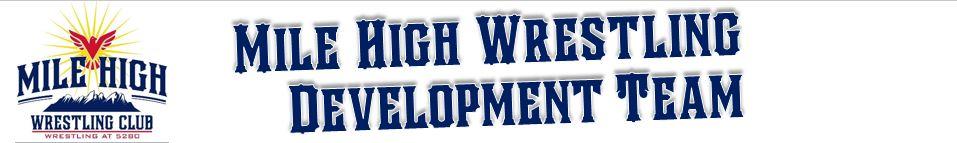 Mile high website banner