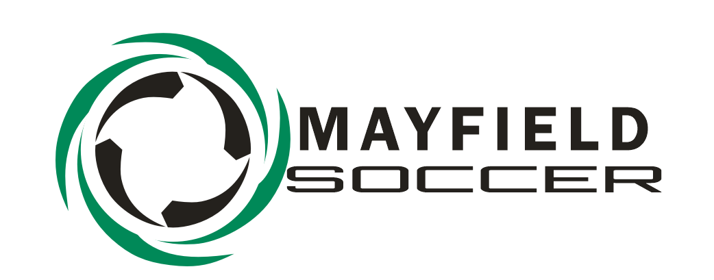 New msc logo wtext