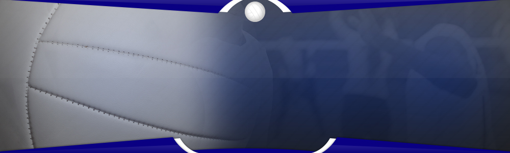 Bluevolleball