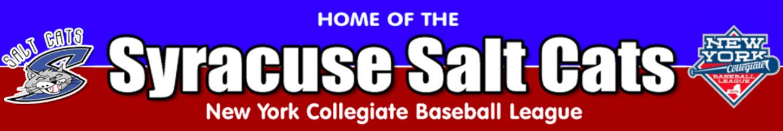 New saltcats banner