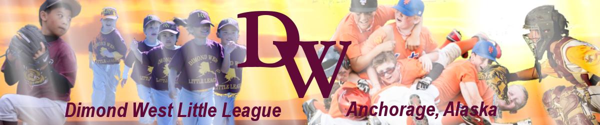 Dwll banner 1 1