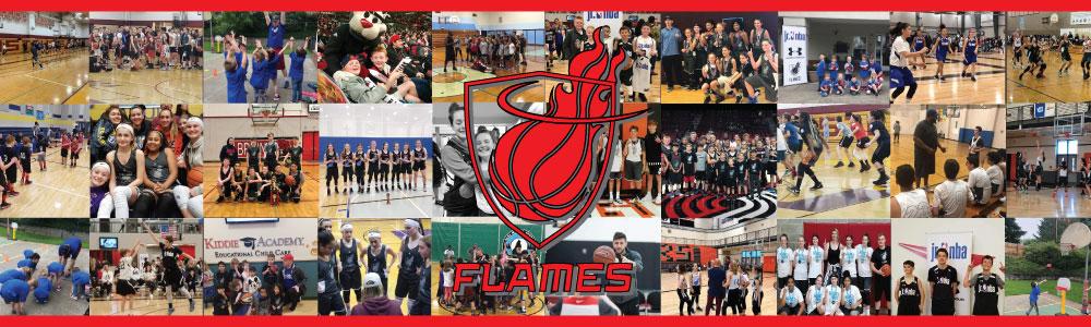 Flames se web banner2