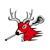 Contact Us Macomb Bucks Lacrosse