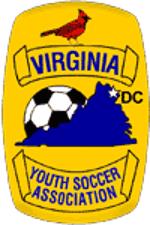 Vysa_logo