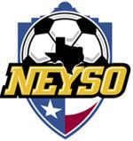 Neyso logo