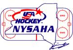 Nysaha logo