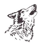 Wolf only in jpeg