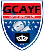 Ayflogo logo