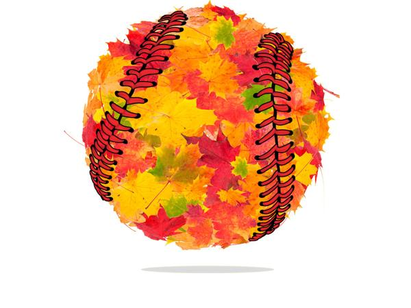 Image result for fall ball