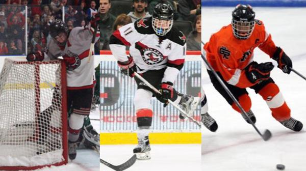 MN H.S.: More On Minnesota's 2017 Mr. Hockey Finalists