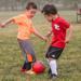 2017 Fall Soccer Registration opens June 23rd!