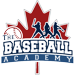 The Baseball Academy Logo