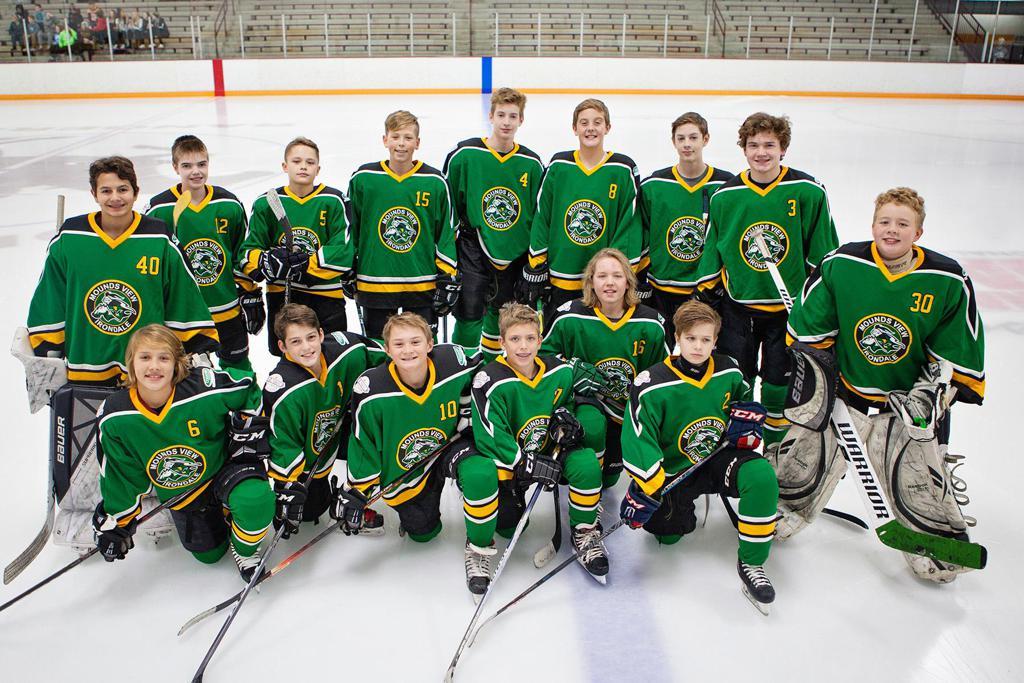 2018-19 MVI Peewee A (team photo)