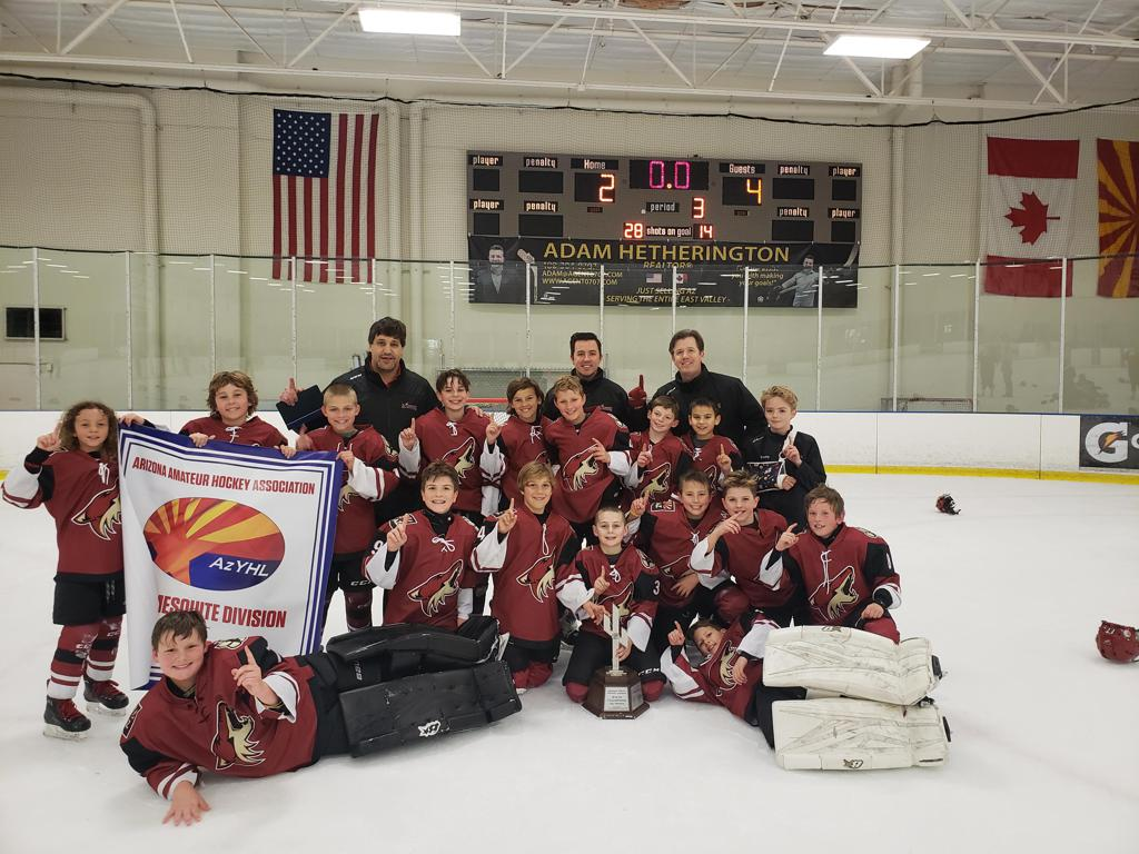 CONGRATULATIONS TO THE JR COYOTES 10U Elite team the 2018-19 ARIZONA TRAVEL HOCKEY  STATE CHAMPIONS