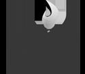 Viking Trophies logo