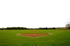 Tiger Field