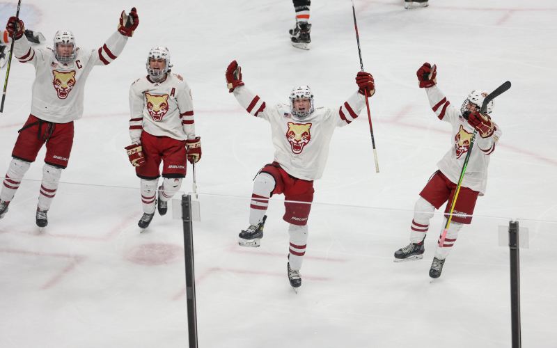 Lakeville South finished second in the 2021 Class 2A state tournament. The Cougars should return plenty of talent from this year, which made it easy to select them as the top team in our 2021-22 Class 2A Way-Too-Early Top 10 list. Photo by Cheryl A. Myers