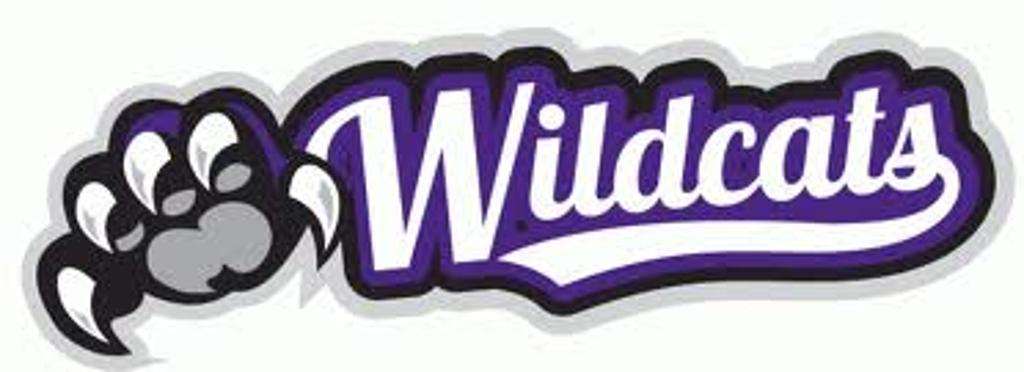 sc nickols wildcats youth logo placement youth logo placement chart