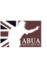 Amateur Baseball Umpire Association