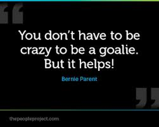 Hockey Goalie Quotes. QuotesGram