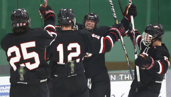MN H.S.: Mr. Hockey Candidate Steven Spinner's Shorty Lifts Eden Prairie Past Elk River In Edina Classic Tourney Acrion