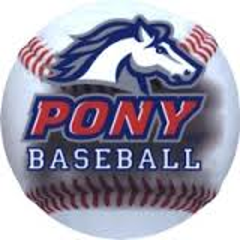 2014 Pony Baseball Rules