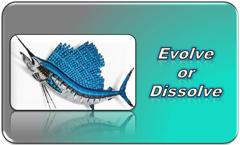 Evolve or Dissolve Training