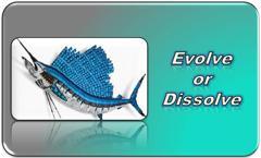 Evolve or Dissolve Training
