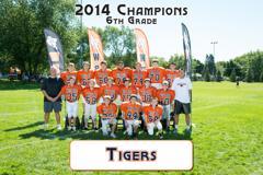 2014 Tigers