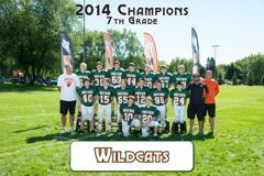 2014 Wildcats