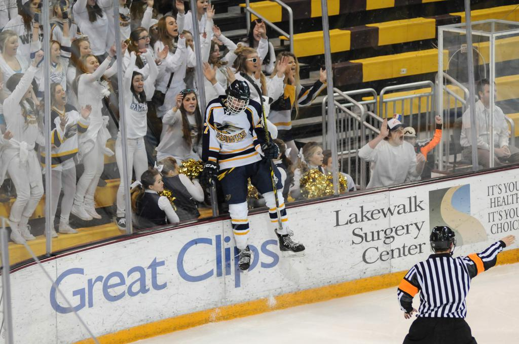 Hermantown's Ryan Kero celebrates after scoring in the Hawks' win over Hibbing/Chrisholm (Photo: Matt Christians)
