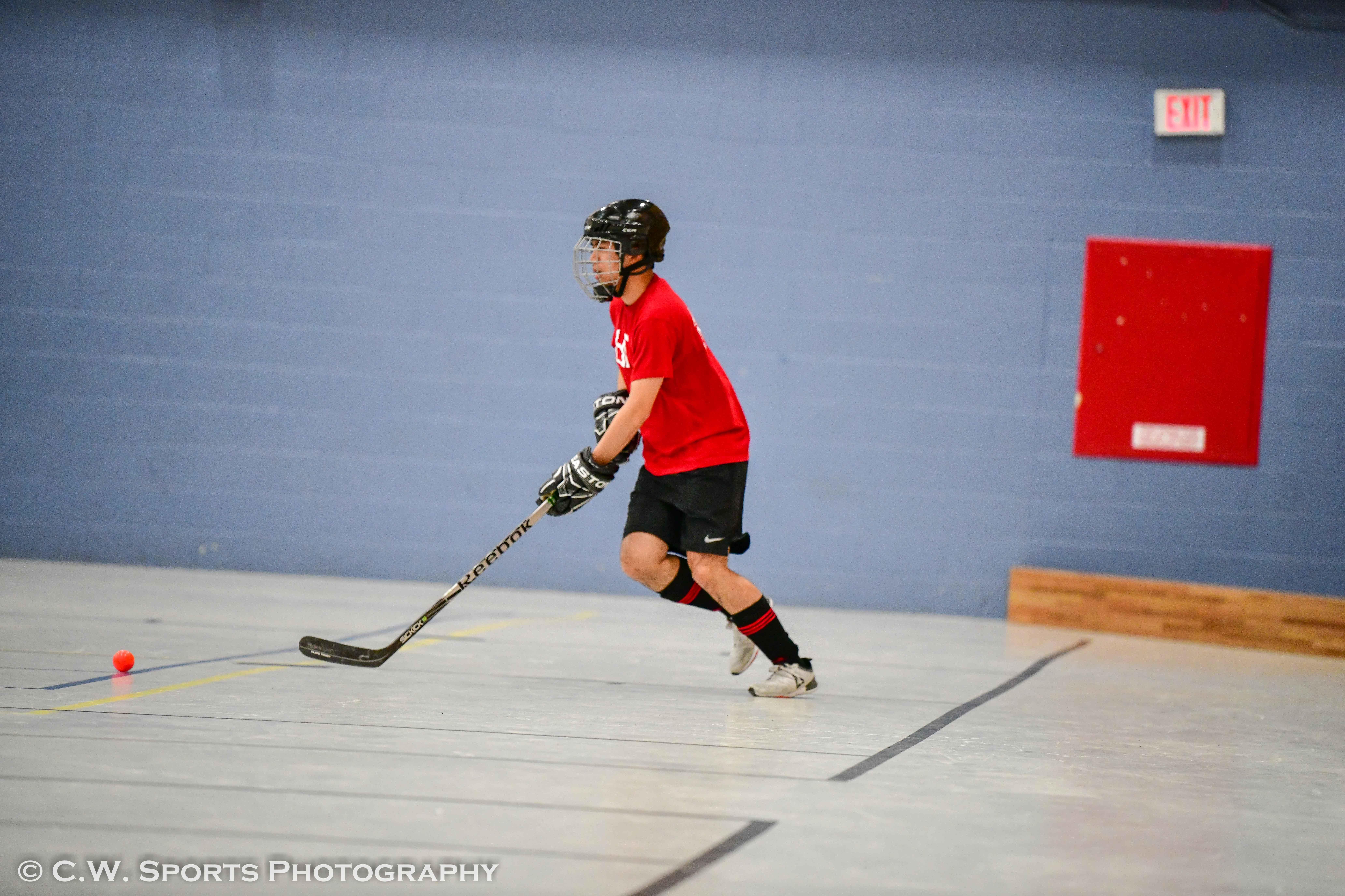 Toronto Ball Hockey League