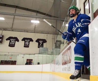 MN H.S.: 2017-2018 Minnesota Ms. Hockey Watch List