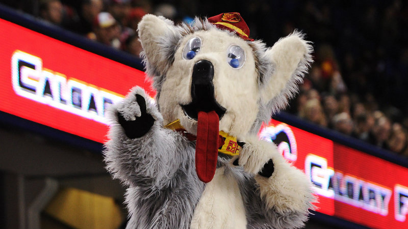 Harvey was the NHL's first official mascot, making his Calgary Flames debut in 1984. Photo courtesy of the Calgary Flames