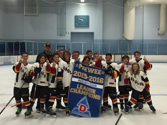 Pee Wee Red DNHL Champions