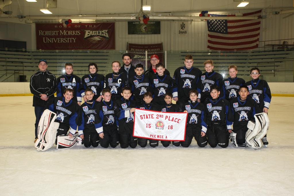 Chicago Bulldogs PeeWee '04s - 2nd Place IL State Championships