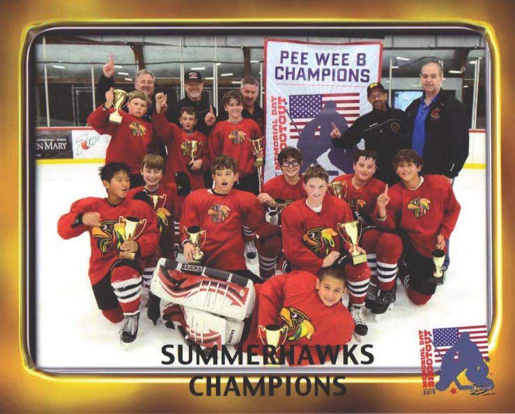 PeeWee B Summerhawks Champions