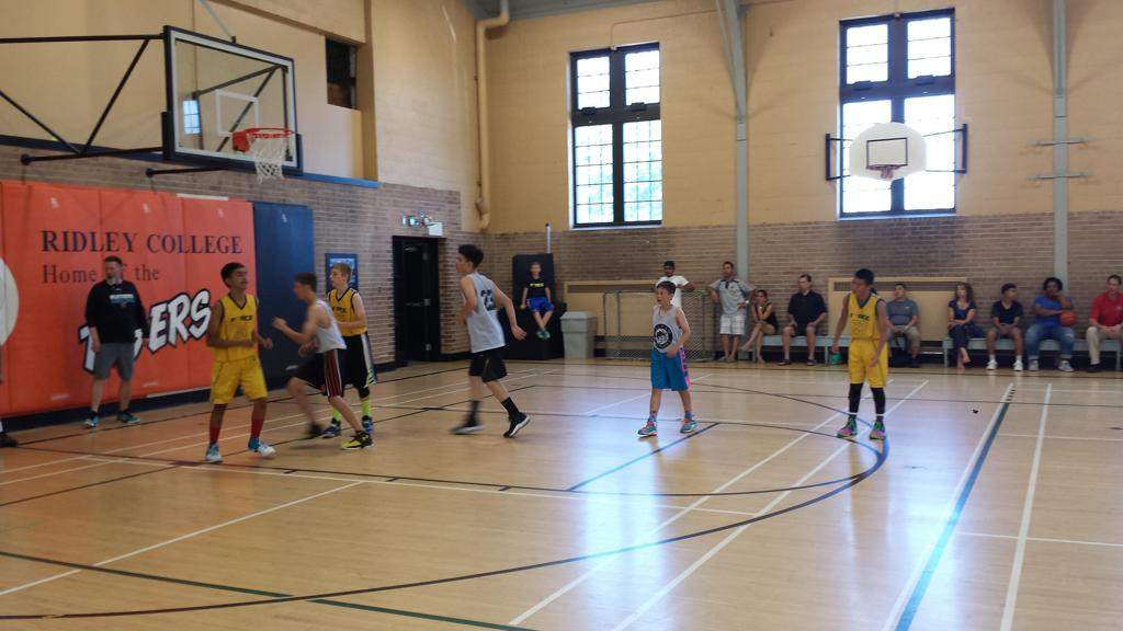 orangeville hawks basketball orangeville hawks all