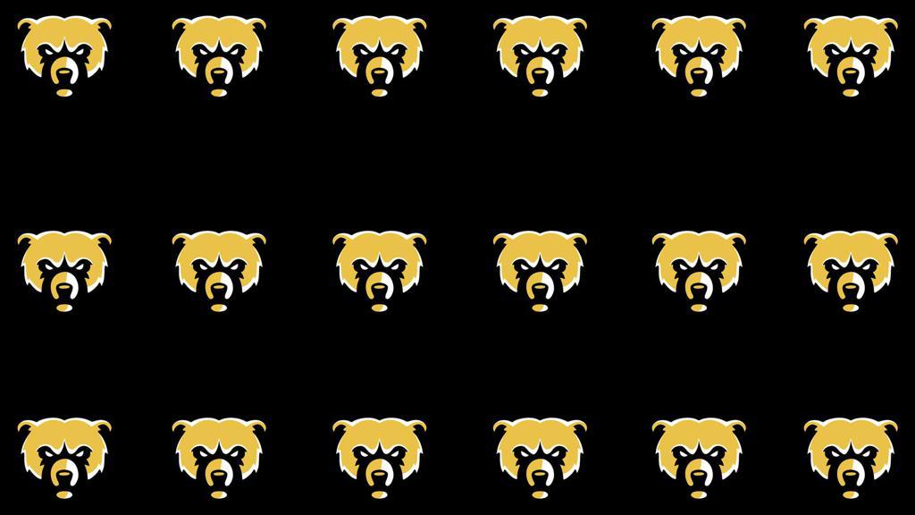 Bears Logos