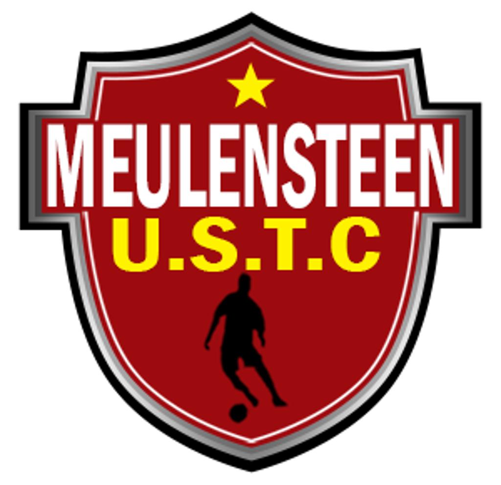 Meulensteen logo