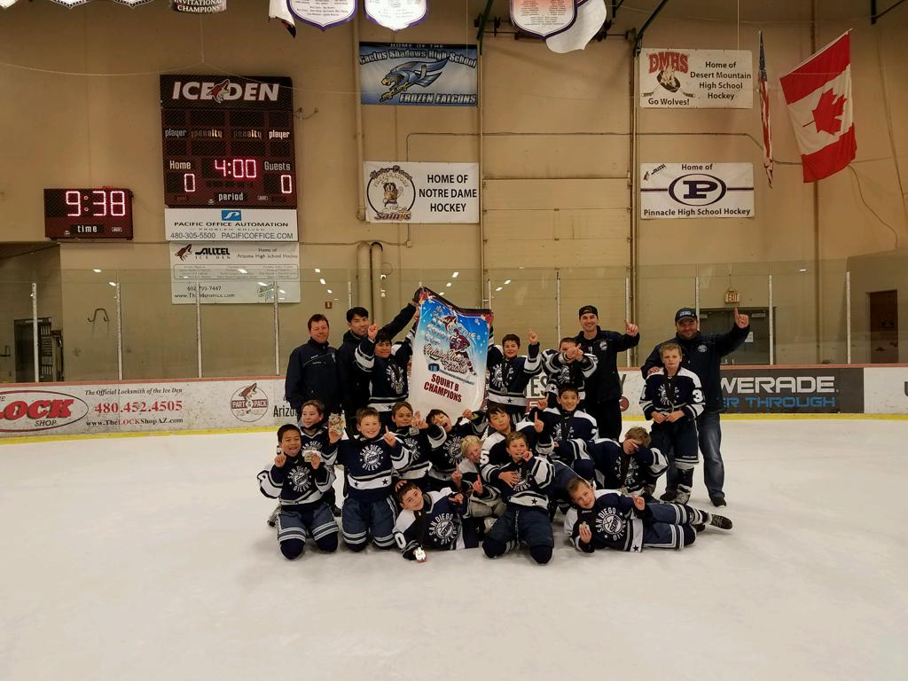 Arizona midget hockey teams