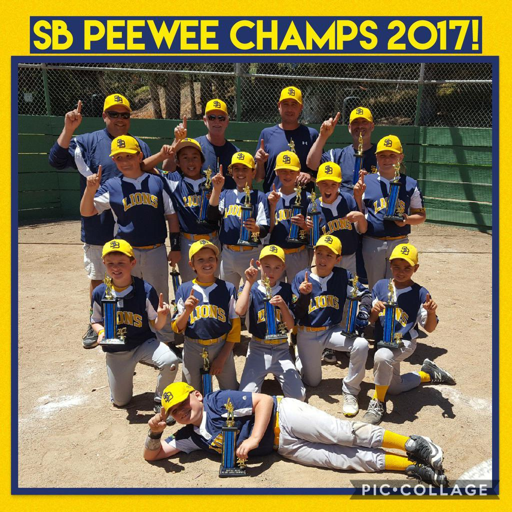Lions / SBYB Pee Wee Champs (photo credit: Shannon Rohatch)