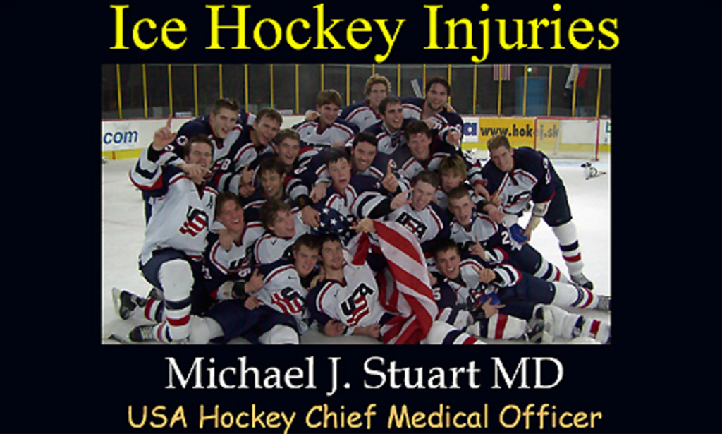 http://assets.ngin.com/attachments/document/0042/6142/Hockey_Injuries_USA_Hockey_web_site1.ppt