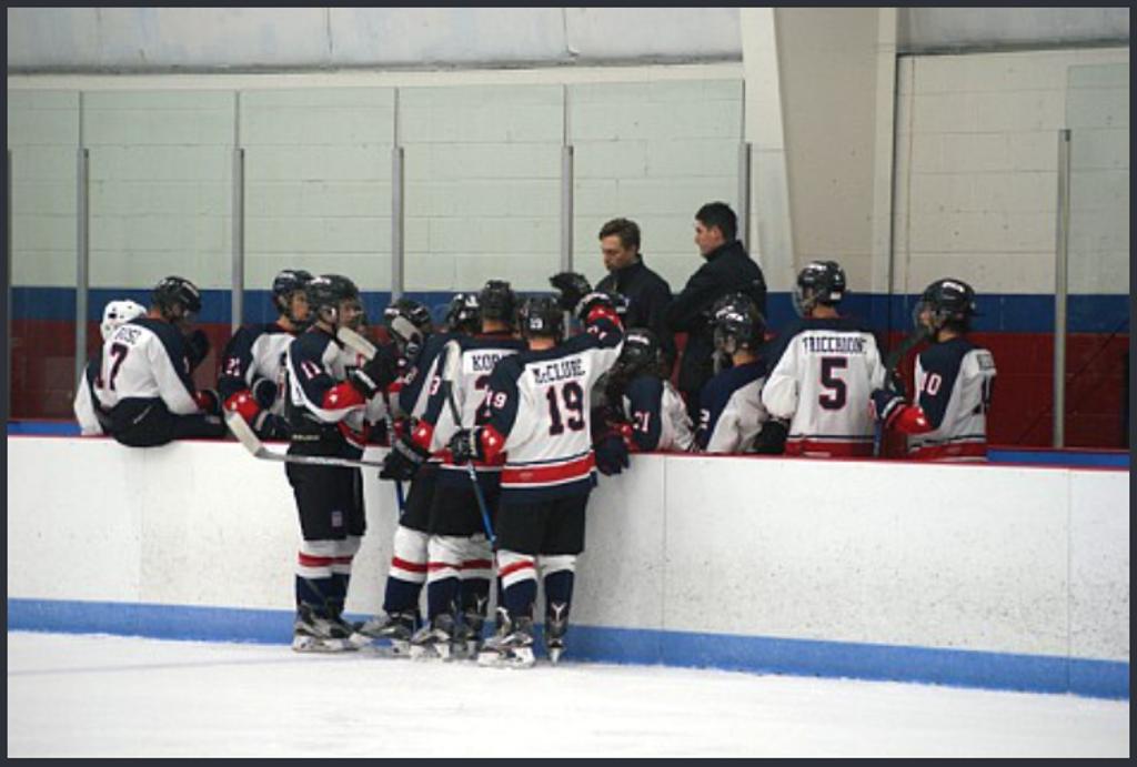 The U16 Pics celebrate a goal against the Hartford Jr. Wolf Pack