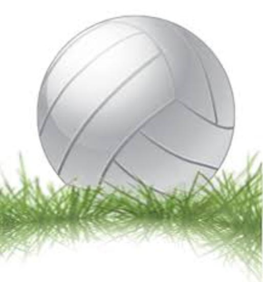 Grass Volleyball ... Coming Soon !!