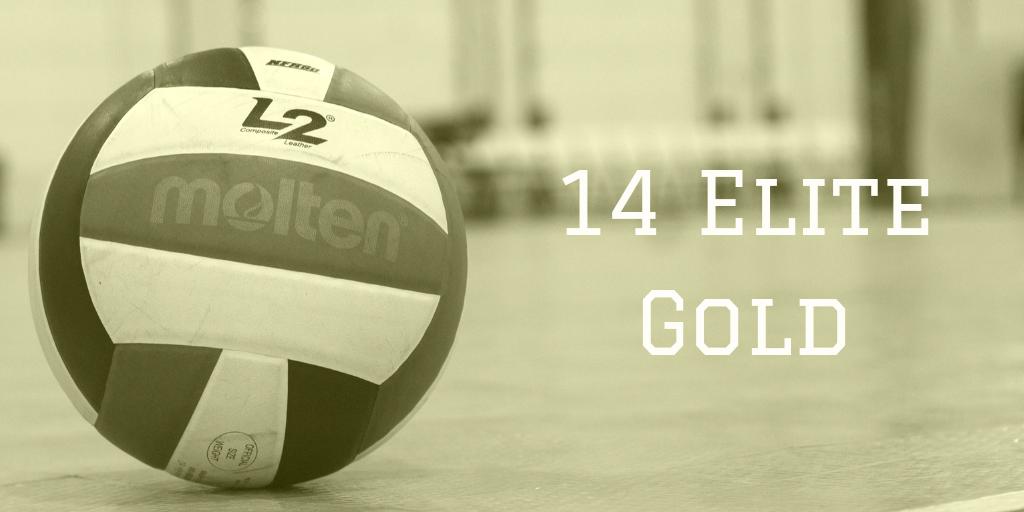 14 Elite Gold