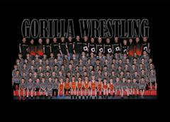 Gorilla team photo small